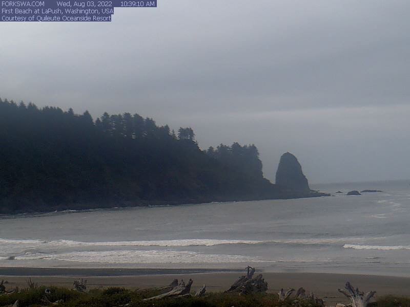 First Beach Webcam
